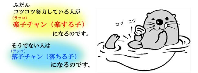 slide_2_rakko2